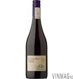 Cono Sur - Organic Pinot Noir 2012